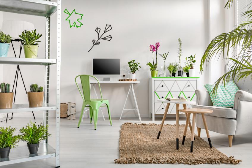 La déco nature, la green attitude dans votre maison
