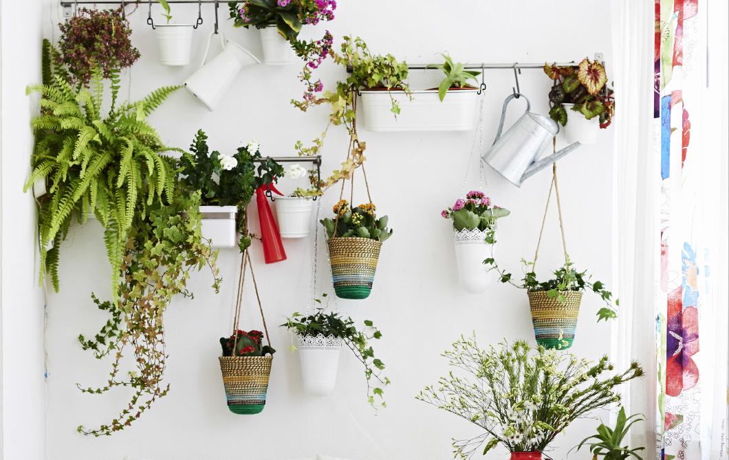 Le mur végétal, un jardin dans votre intérieur