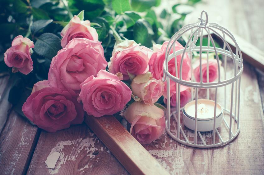 La cage à oiseau décorative : l'accessoire tendance
