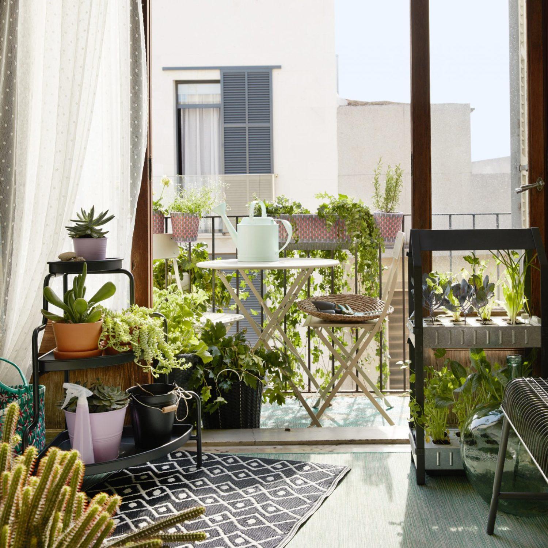 Créer un mini potager sur son balcon