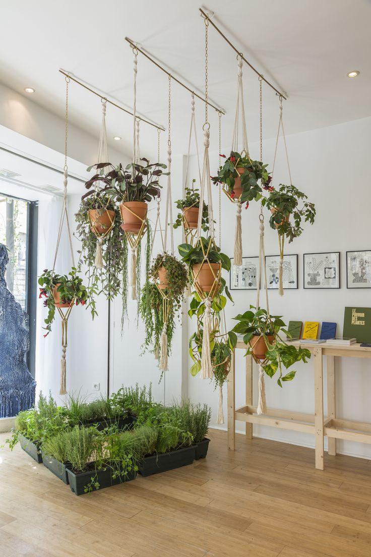 Jardin d'été en intérieur pour citadines en mal de verdure